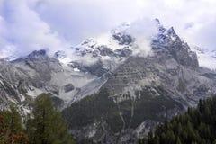 阿尔卑斯在高度的夏天1986年,意大利 免版税库存图片