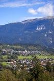 阿尔卑斯夏时 库存图片