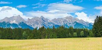 阿尔卑斯奥地利全景夏天 图库摄影