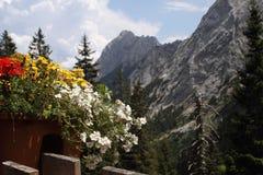 阿尔卑斯奥地利大阳台 免版税库存照片