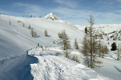 阿尔卑斯意大利路滑雪线索 免版税库存照片