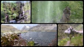 阿尔卑斯拼贴画 高山、植物群、动物区系和人们 股票录像