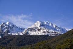 阿尔卑斯新的南西兰 免版税库存照片