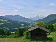 阿尔卑斯的奥地利外型 库存图片