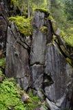 阿尔卑斯的岩层 免版税库存图片