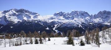 阿尔卑斯的峰顶有雪的在一个晴朗的冬日 免版税库存照片