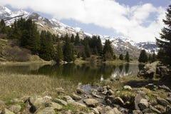 阿尔卑斯的弗利克斯湖在Grisons (瑞士) 免版税图库摄影