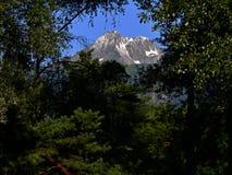 阿尔卑斯的Sion远景 免版税库存照片