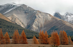 阿尔卑斯秋天横向 图库摄影