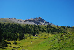 阿尔卑斯美丽的森林小屋孤独的瑞士 图库摄影