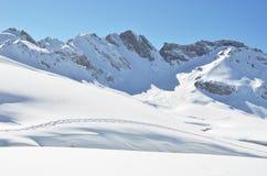 阿尔卑斯脚步pizol雪瑞士 免版税库存图片