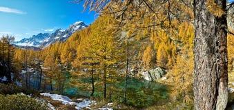 阿尔卑斯蓝色devero湖巫婆 库存图片