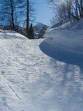 阿尔卑斯运行滑雪 库存照片