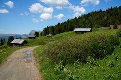 阿尔卑斯风景和木客舱在绿色草甸 库存照片