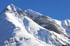 阿尔卑斯,在雪报道的山脉,冬天 免版税库存照片