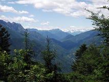 阿尔卑斯,在洛枷诺瑞士附近 免版税库存照片