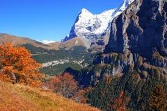 阿尔卑斯,瑞士 库存图片
