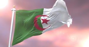 阿尔及利亚沙文主义情绪在风在日落,圈 皇族释放例证