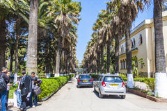 阿尔及尔 免版税库存照片