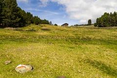 阿尔姆河草甸,波尔扎诺自治省,意大利 免版税库存照片