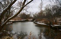 阿尔弗莱德考德威尔百合池塘 图库摄影