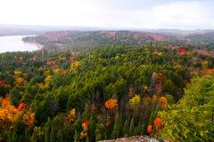 阿尔根金族公园秋天颜色 图库摄影