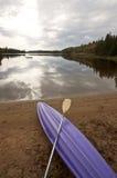 阿尔根金族公园Muskoka安大略湖原野 免版税库存图片