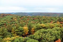 阿尔根金族国家公园在秋天 免版税库存照片