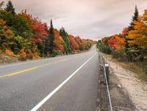 阿尔根金族省2公园在秋天秋天颜色的Hyway 60 免版税库存图片