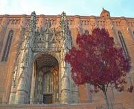 阿尔比大教堂 库存图片