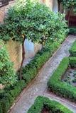 阿尔汉布拉庭院 库存照片