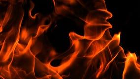 阿尔法通道火焰和火 股票录像