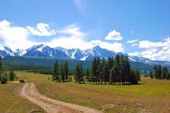 阿尔泰夏天风景,俄罗斯 库存图片