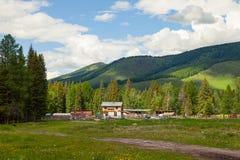 阿尔泰山与绿色树和草的一个美丽如画的地方在狂放与一个农场和房子在天空蔚蓝下与 免版税库存图片