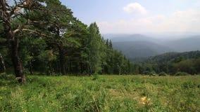 阿尔泰山全景从高峰登上Tserkovka的在Belokurikha。 股票视频