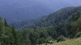 阿尔泰山全景从高峰登上Tserkovka的在Belokurikha 影视素材