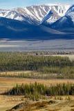 阿尔泰山在与北部Chuisky里奇的Kurai地区backgr的 库存照片