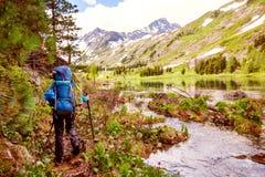 阿尔泰山的远足者 免版税库存照片