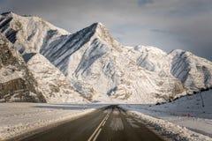 阿尔泰山,路,冬天 免版税库存图片