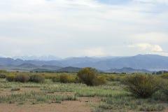 阿尔泰的蒙古干草原和山 库存图片