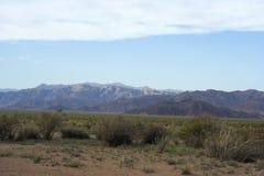 阿尔泰的蒙古干草原和山 图库摄影