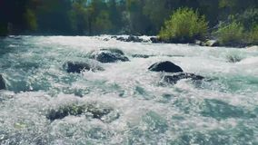 阿尔泰, Kucherla,俄罗斯- 2018年6月, 20日:冷的山河 当前 在河的门限 岩石和结构树 清楚的蓝色 影视素材