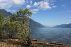 阿尔泰 在山湖Teletskoye的Utro 免版税图库摄影
