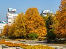 阿尔玛蒂-金黄秋天在城市 免版税库存图片