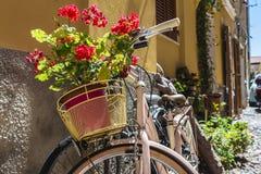 阿尔盖罗,撒丁岛,意大利老镇的街道  图库摄影