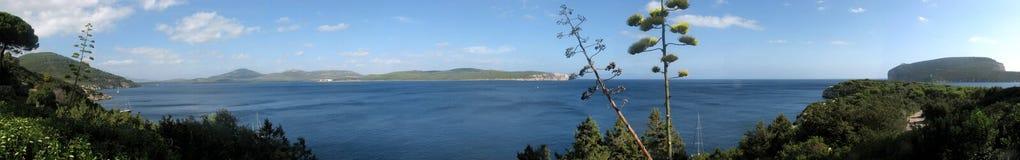 阿尔盖罗& x28; Italy& x29; 品柱卡奇亚海湾-撒丁岛 免版税图库摄影