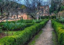 阿尔罕布拉宫(赫内拉利费宫),格拉纳达,西班牙庭院  免版税库存图片