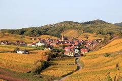 阿尔萨斯村庄在葡萄园里 图库摄影