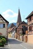 阿尔萨斯村庄在葡萄园里 库存照片