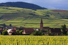 阿尔萨斯法国小的村庄葡萄园 库存照片